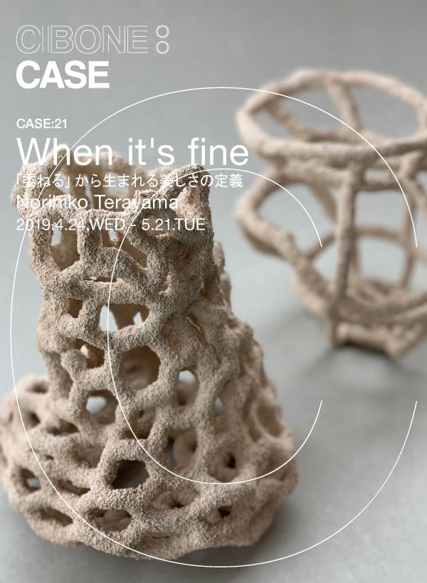 top_case21_sp